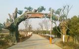 生态园仿真树大门