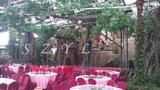 生态餐厅舞台造景